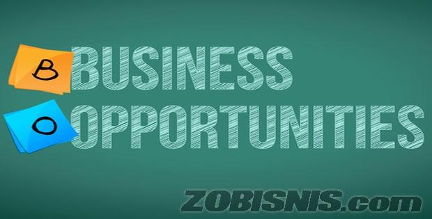 Peluang bisnis menjanjikan saat ini