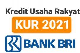 Pinjaman Kredit KUR BRI Terbaru 2021